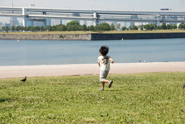 Kid chasing a pigeon
