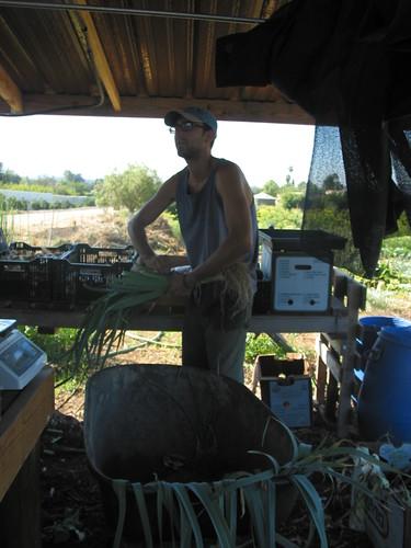 Justin at Mano Farm