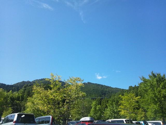 もうすぐ秋なのに夏日の写真