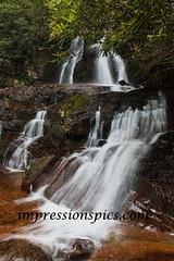 Laurel Falls GSMSP