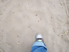 First Step on the Trail (Zoesdare) Tags: statepark sky nature clouds sand dunes indiana lakemichigan kemilbeach dunesnationallakeshore