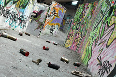 Swim with taggs (Automartinez) Tags: france abandoned pool swimming canon de eos arts graph spray peinture rouen alban couloir piscine bombe dessins îles abandonné jn 500d taggs joachin aj2011 lacrois automartinez seinemaritine