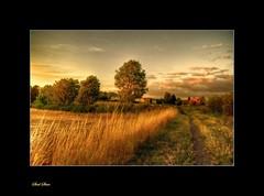 walking home (Steel Steve) Tags: dusk rotherham colorphotoaward superaplus aplusphoto wickersley