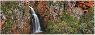 An Australian Fall