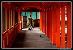 Hinomisaki Temple,  (Ilko Allexandroff (a.k.a. sir_sky)) Tags: park street light red portrait people white black slr art beautiful japan umbrella canon shopping dark asian temple photography google interesting natural emotion bokeh good awesome explore more most  mostinteresting ambient osaka shimane dslr hdr    hinomisaki  obp naniwa  ilko asianbeauty 50d   strobist canon50d   beautyshoots bestcapturesaoi mygearandme mygearandmepremium mygearandmebronze mygearandmesilver allexandroff  imghp