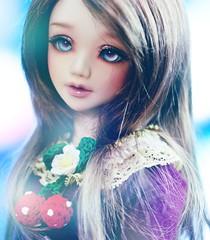 blue (Cyristine) Tags: girl ball asian strawberry doll jade wig dreamy bjd monique ichigo msd jointed unoa ajumapama nomyens