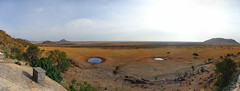 Tsavo East National Park panorama