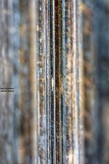 Berlin (GZZT) Tags: berlin wall germany berlinwall rost mitte mb mauer stange stahl eisen 030 guessedberlin gedenkstätteberlinermauer bernauerstrase gwbthmlamp mittemitte gzzt martinbriese