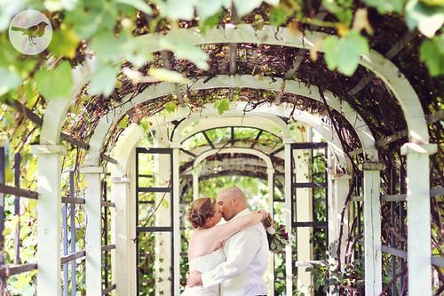 Kelly & Dom - Wedding 2033