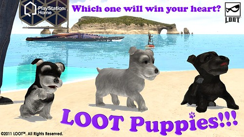 LOOT_Puppies_1280x720