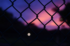 [boundries] (world wide flan) Tags: pink sunset sky orange st clouds 35mm fence nikon focus dof purple florida bokeh petersburg pete fla shalow d7000