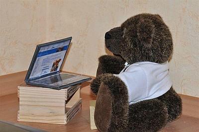 Winnie Webmaster