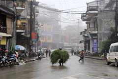 99_LAO85430010 (TC Yuen) Tags: vietnam sapa hmong terracefarming locai