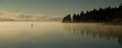 Misty Morning (77dmj) Tags: morning usa mist lake reflection nationalpark moody peace unitedstatesofamerica parks national yellowstone atmospheric westyellowstone 77dmj