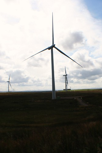 Turbines at Whitelee Wind Farm