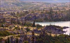 Klondike Highway - Landscape - Alaska (blmiers2) Tags: travel mountain mountains nature alaska landscape nikon highway klondike d3100 blm18 blmiers2