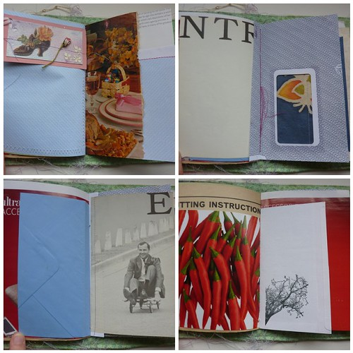 Cars and Mushrooms book