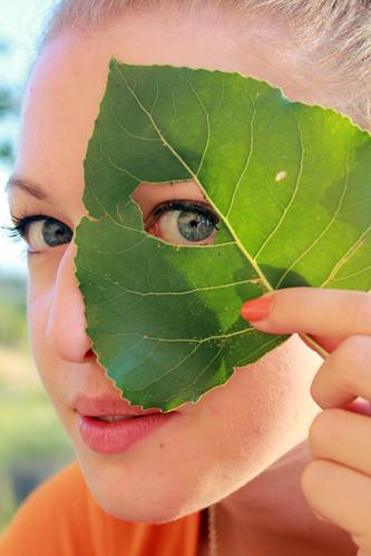 フリー写真素材, 人物, 女性, 葉っぱ, 覗く,