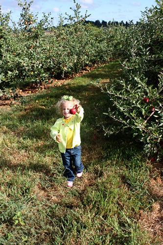 Autumn-with-apple