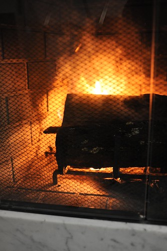 暖炉(薪使用)