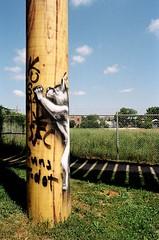 Graffiti Lynx (Georgie_grrl) Tags: friends streetart toronto ontario graffiti expression wildlife pillar photographers social pentaxk1000 lynx thejunction torontophotowalk cans2s rikenon12828mm topwjt conjunctionjunctionwhatsyerfunction