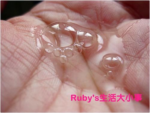 施巴洗髮乳 (5)