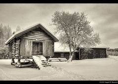 Skauen (vegarste) Tags: trees winter blackandwhite bw snow norway sepia architecture barn norge vinter nikon norwegen croft akershus fetsund hdr bnw storehouse snø fet arkitektur romerike låve stabbur d90 3xp photomatix skauen tonemapping hvaltjern 3exp husmannsplass silverefexpro