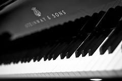 S&S (^CiViLoN^) Tags: music white black blanco de keys dof negro piano campo sons d60 profundidad stenway