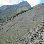 "Terraces <a style=""margin-left:10px; font-size:0.8em;"" href=""http://www.flickr.com/photos/14315427@N00/6128537440/"" target=""_blank"">@flickr</a>"