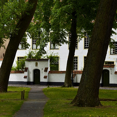 Bguinage, Bruges - Begijnhof, Brugge (pierre hanquin) Tags: trees color tree nikon belgium belgique belgi arbres arbre flandres vlaanderen d7000