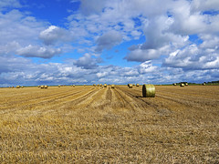 Let the good times roll (RainerSchuetz) Tags: field clouds harvest textures stubblefield baleofstraw blinkagain