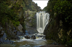 Piroa Falls, Waipu Gorge Scenic Reserve