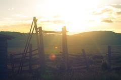 Mormon Row, Grand Teton National Park, Jackson Hole, Wyoming, USA. (Flash Parker) Tags: travel usa mountains barn wyoming tetons jacksonhole mormons coulter grandtetonnationalpark usa65843