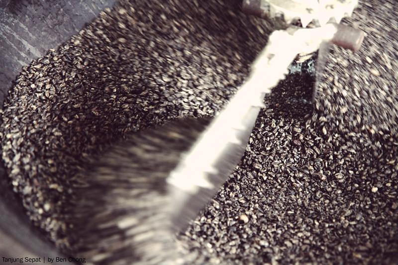 Tanjung Sepat - Coffee Bean