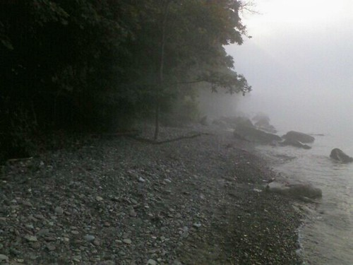 foggy lake1