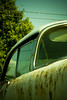 Bird on a Wire (parabol46) Tags: oldcar oldcars rustycar 1952 rustycars birdonawire greentint 1952oldsmobile vintagereproduction vintagereproductions 1952car vintagestylized