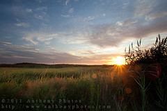 too damn early (scifitographer) Tags: sun grass sunrise canon landscape dawn scenic august marsh delaware smyrna 2011 canon1740mml bethanthony 5dmkii retroreflectography