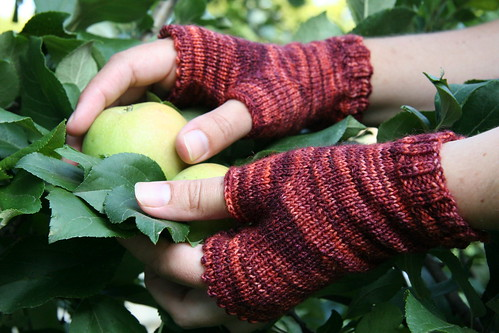 tigerlily wineberry gloves 1