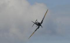 Spitfire Mk XVI (phantom ocu) Tags: scotland team arc historic event ww2 spitfire moray firth fortgeorge messerschmitt battleofbritain me109 buchon renactor aircraftrestorationcompany td248 celebrationofthecenturies