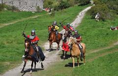 Battle of Wisby 1361, Medieval week 2011 (Bochum1805) Tags: horse knight gotland chevalier pferd reenactment visby citywall ritter ringmur medeltidsveckan mittelaltermarkt stadsmur defensivewall dumoyenâge