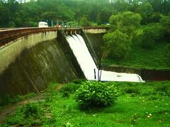 948. Kundala Dam: Shutters open (profmpc) Tags: green project dam electricity irrigation munnar hydel kundala