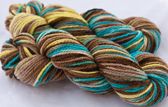 Jacob's Ladder on Cestari Fine Merino- 3.5 oz(...a time to dye)