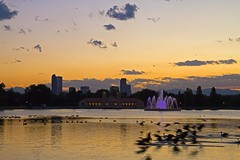 The Geese Arrive (mclcbooks) Tags: sunset lake fountain birds skyline landscape rockies pond colorado cityscape denver rockymountains canadageese citypark