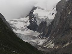 Hochgebirge - Juli 11 , NGID746984676 (naturgucker.de) Tags: tirol sterreich naturguckerde cjrgchmill hohemutmitangrenzendentlernugletschern ngid746984676