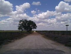 Chilling down a dirt road... (LoveInBloomFloral) Tags: road blue sky country dirt lane ansh scavenger7