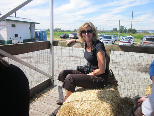 Meadows Maze (Pitt Meadows, Circle Farm Tours)