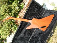 Fernandes 11 (dainvaldini) Tags: electric japan guitar explorer fernandes burny fex70