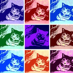 Pop Art Millie 4430BHLb (edgarandron - Busy!) Tags: cats cute cat feline tabby kitty kitties tabbies sensational millie graytabby