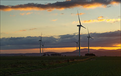 waubra-6333-ps-w (pw-pix) Tags: blue sunset sky orange cloud sun clouds landscape grey power cloudy towers australia windmills victoria hills windfarm ballarat windpower lateafternoon settingsun windturbines baldhills powergeneration centralvictoria acciona waubra nearballarat waubrawindfarm