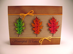 Colored Wishes (QuarkyKatie) Tags: realleaves findjoy designerwoodgrain
